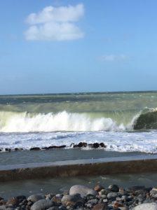 【日々のこと】季節はずれの海に行ってきました